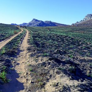 Walking trail in South Africa