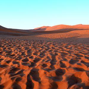 Oldest desert in the world