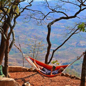 Probably best hummock spot I have ever seen in Livingstone, Malawi