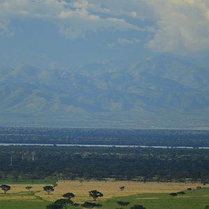 Ugandan savannah