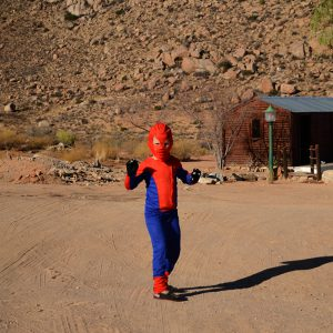 Spider boy in the campsite in South Africa