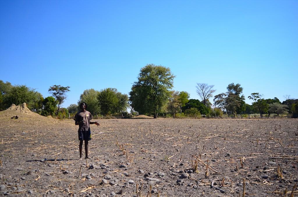 収穫が終わり、次の雨季を待つクリストフの畑
