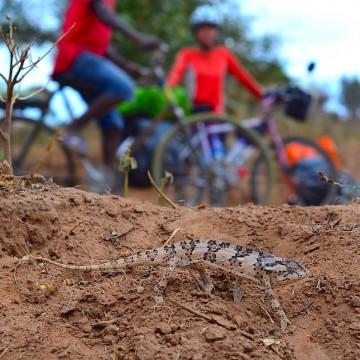 アフリカ、自転車旅のすすめ
