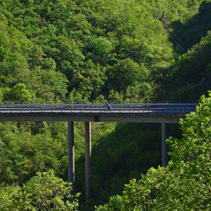 Cross over the bridge in national park in Macedonia