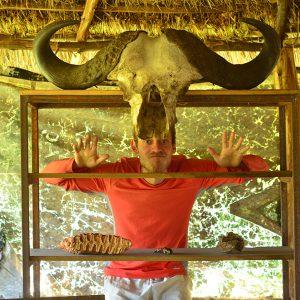 Buffalo Elliot in Kenya