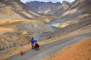 旅する犬との5日間